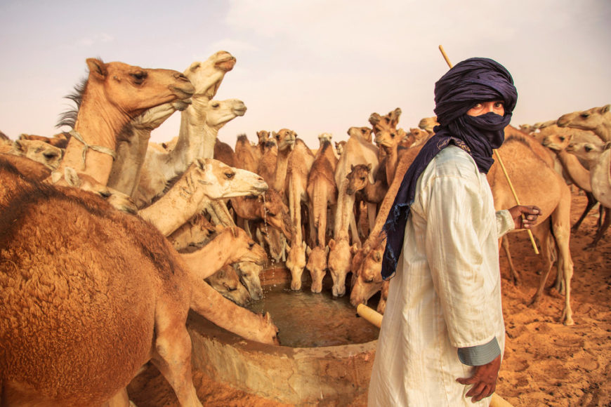 Mauritanian nomad and his camels at a water-hole